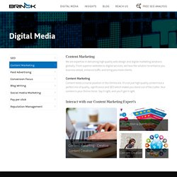 Brinok offers high quality content marketing Services