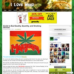 Guide to Bud Quality, Quantity, and Smoking Devices