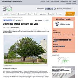 Quand les arbres sauvent des vies