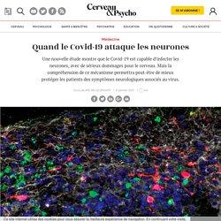Quand le Covid-19 attaque les neurones