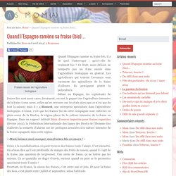 Quand l'Espagne ramène sa fraise (bio)…