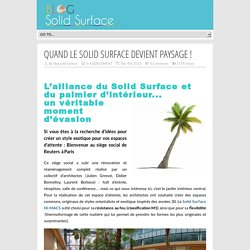 Solid surface pour Reuters - PARIS