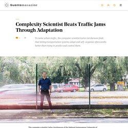 Complexity Scientist Beats Traffic Jams Through Adaptation