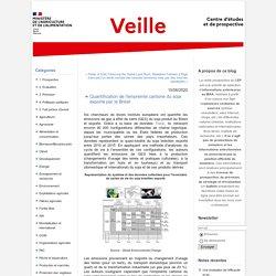 MAA CEP 16/06/20 Quantification de l'empreinte carbone du soja exporté par le Brésil
