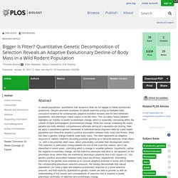 Bigger Is Fitter? Quantitative Genetic Decomposition of Selection Reveals an Adaptive Evolutionary Decline of Body Mass in a Wild Rodent Population