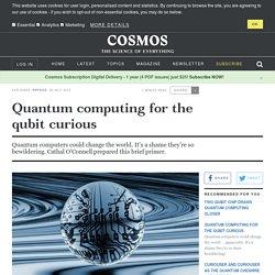 Quantum computing for the qubit curious
