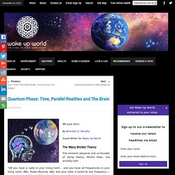 Quantum Phase: Time, Parallel Realities and The Brain