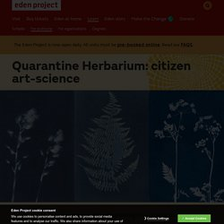 Quarantine Herbarium: citizen art-science - Eden Project, Cornwall