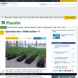 LE MONDE 25/04/16 Que faire des « OGM cachés » ?