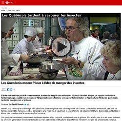 Les Québécois encore frileux à l'idée de manger des insectes