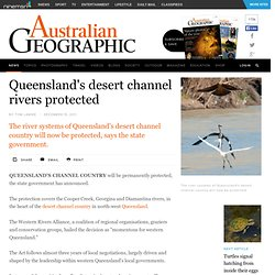 Queensland's desert channel rivers protected