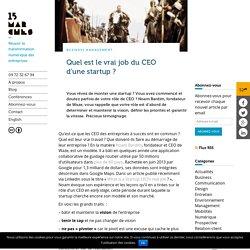 Quel est le vrai job du CEO d'une startup ?