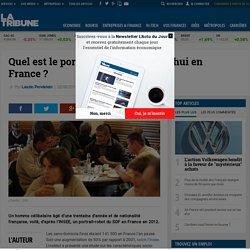 Quel est le portrait du SDF aujourd'hui en France?