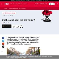 FRANCE INTER 26/12/17 LE TELEPHONE SONNE - Quel statut pour les animaux ?