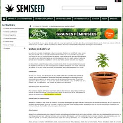 Quelles graines pour quelle culture ? - SemiSeed