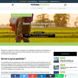Quels sont les dangers des pesticides ?