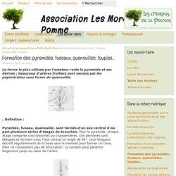 Formation des pyramides, fuseaux, quenouilles, toupies... - Association Les Mordus de la Pomme