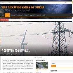 Consciousness of Sheep