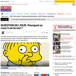QUESTION DU JOUR. Pourquoi se cure-t-on le nez ? - Sciencesetavenir.fr