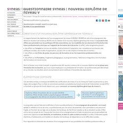 Questionnaire Syneas : nouveau diplôme de niveau V