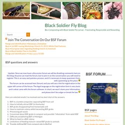 BSF questions and answers » Black Soldier Fly Blog