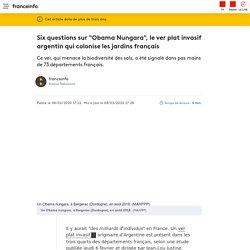 """FRANCE INFO 08/02/20 Six questions sur """"Obama Nungara"""", le ver plat invasif argentin qui colonise les jardins français"""