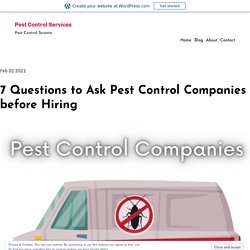 7 Questions to Ask Pest Control Companies before Hiring