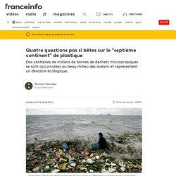 """Quatre questions pas si bêtes sur le """"septième continent"""" de plastique"""