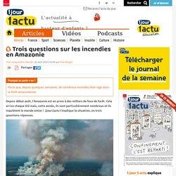 Trois questions sur les incendies en Amazonie