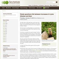 Study questions link between increases in Lyme disease and deer