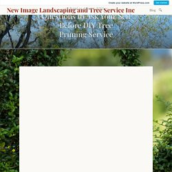 Questions to Ask Your Self Before DIY Tree Pruning Service