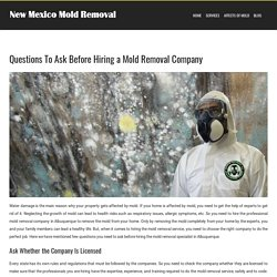 Questions to Ask Before Hiring a Mold Removal Company