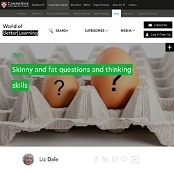 Skinny and fat questions and thinking skills