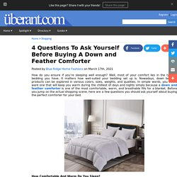 4 Questions To Ask Yourself Before Buying A Down and Feather Comforter