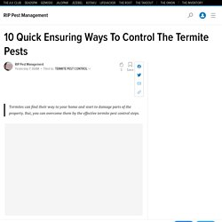 10 Quick Ensuring Ways To Control The Termite Pests