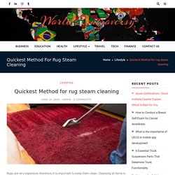 Quickest Method for rug steam cleaning - World Controversy