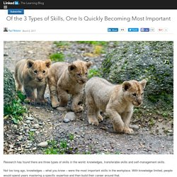 Of the 3 Types of Skills, One Is Quickly Becoming Most Important