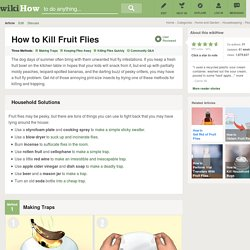 3 Ways to Kill Fruit Flies