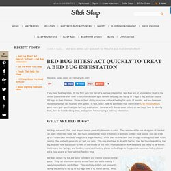 Bed Bug Bites? Act Quickly To Treat A Bed Bug Infestation - www.SlickSleep.com