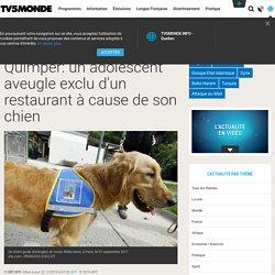 Quimper: un adolescent aveugle exclu d'un restaurant à cause de son chien