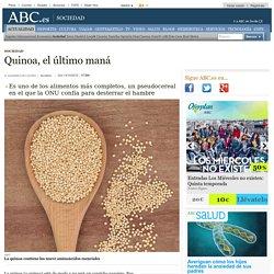 Quinoa, el último maná