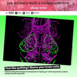 Feel like quitting? Blame your brain cells