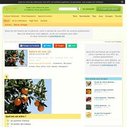 Quizz Nature en vrac (2) - Quiz Fleurs, Nature, Arbres