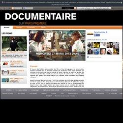 50 ANS QUI ONT CHANGE NOTRE QUOTIDIEN : DE LA PETITE EPICERIE AUX COURSES SUR INTERNET, Documentaire sur Paris Première