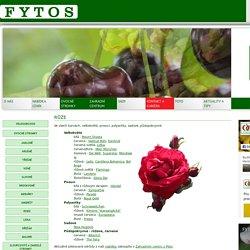 FYTOS.cz