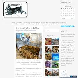 Deep Litter Method for Rabbits