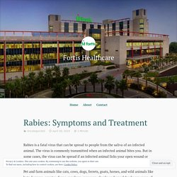 Rabies: Symptoms and Treatment
