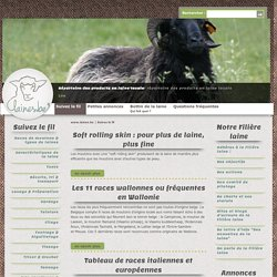 Races de moutons & types de laines