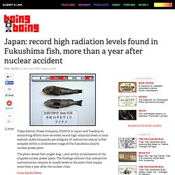Japan: record high radiation levels found in Fukushima fish, more than a year after nuclear accident