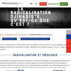 La radicalisation djihadiste, qu'est-ce que c'est ?